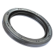 1-1/2x2x3/8 '' R21 Single Lip Oil Seal